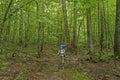 Trekking Through a Verdant Forest Royalty Free Stock Photo