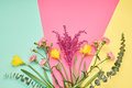Trendy fashion Bouquet. Summer Concept. Minimal Royalty Free Stock Photo