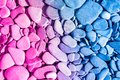 Trendy Neon Colour Background ...
