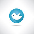 Trendy round blue twitter bird social media web. Bird icon. Royalty Free Stock Photo