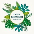 Trendy Summer Tropical Leaves Vector Design on white background.