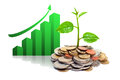 Tres growing on coins hands holding tress csr sustainable development economic growth Royalty Free Stock Image