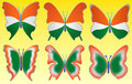 Tri color butterfly on yellow background Stock Photography