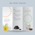 Tri fold spa brochure mock up booklet layout editable design template Royalty Free Stock Images