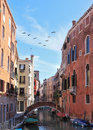 A triangular flock of migratory birds over the venice eternal fabulous through narrow channel constructed an elegant bridge Royalty Free Stock Photo