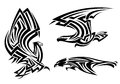 Tribal eagle hawk and falcon set for tattoo or heraldry design Stock Photos