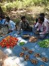 Tribal villagers bargain for vegetables s orissa india nov on nov in chatikona market orissa india Stock Photos
