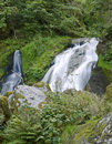 Triberg Waterfalls in green vegetation Stock Photos