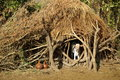 Tribes of the omo valley in ethiopia african hut surmi tribe Royalty Free Stock Images