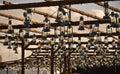 The Tribune Lanterns Royalty Free Stock Photo