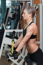 Triceps workout beautiful fit woman exercise in the gym Stock Photography
