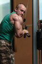 Triceps workout young bodybuilder exercise in the gym he is performing two arm push downs Royalty Free Stock Images