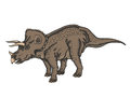 Triceratops herbivorous dinosaur that lived in the late cretaceous vector illustration Stock Photography