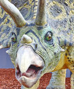 Triceratops portrait Stock Photo