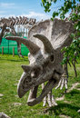 Triceratops skeleton outdoors Royalty Free Stock Photo
