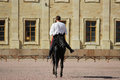 trick riding to men at bay stallion who jumps a trot on the sand square in front of the palace Royalty Free Stock Photo