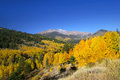 Trickle mountain landscape with colorful aspen trees Stock Photo