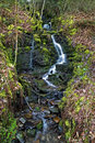 Trickle of water over moss and rocks at Melincourt waterfalls Royalty Free Stock Photo