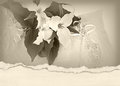 Trillium bridal bouquet on pillow wedding with torn edge border Royalty Free Stock Photography