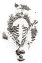 Trilobite fossile imprint drawing silhouette in stone dust, ash, dirt as archeolog, history, geology, paleontology, evolution, ex