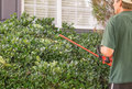 Trim the hedges man in front of house trimming with electric edger Stock Images