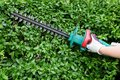 Trimming garden hedge with electrical trimmer Stock Photography