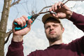 Trimming trees young man with secateurs Stock Photos