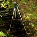 Tripod outdoor a for photo and video cameras Stock Image