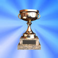 Trophy cup Royalty Free Stock Photos