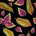 Tropial plants pattern