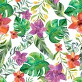 Watercolor tropical pattern wiht flowers.