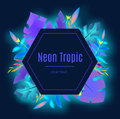 Tropic banner design template. Tropical leaves, blue neon glowing. Royalty Free Stock Photo