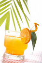 Tropic drink Stock Photography