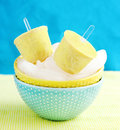 Tropic ice cream pops in bowl with Stock Photography