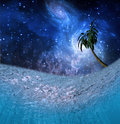 Tropic Night Underwater Royalty Free Stock Photo