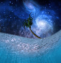 Tropic Night Underwater Scene Royalty Free Stock Photo