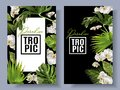 Tropic orchid frames