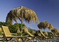 Tropic parasols on the beach Royalty Free Stock Image