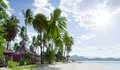 Tropic Shore