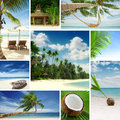 Tropic theme collage composed different images Royalty Free Stock Photo