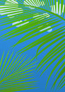 Tropical abstract background Royalty Free Stock Photo