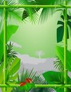 Tropical Background with Bamboo Frame Stock Images