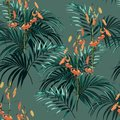 Seamless vector tropical pattern with dark green palm leaves and tropical orange lilies flowers on green background. Royalty Free Stock Photo