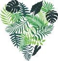Tropical background with palm leaves drawn in the shape of a hea Royalty Free Stock Photo
