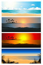 Tropical background set Stock Photography