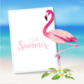 Tropical Background. Tropical Flower and Flamingo Bird Royalty Free Stock Photo