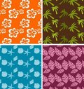 Tropical backgrounds Royalty Free Stock Photo