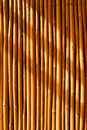 Tropical bamboo fence Royalty Free Stock Photo