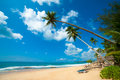 image photo : Tropical beach