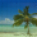 Tropical beach abstract illustration of a palm on Royalty Free Stock Photos